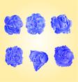 Set of blue roses symbol of love vector image