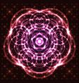 shining abstract mandala vector image