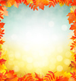 Autumn Red Leaves Border vector image vector image