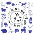 goat and sheep drawings and icons vector image