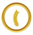 Stalk of ripe barley icon vector image