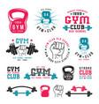 gym club emblems vector image