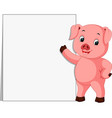 cute pig with blank sign vector image
