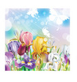 Background with Iris flowers vector image