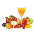 fruit with glass vector image vector image