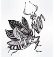 Beautiful hand drawn Mantis beetle vector image