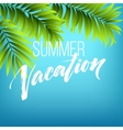 Summer vacation handwriting Typography lettering vector image