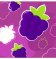 summer blackberry pattern vector image