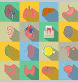 Human organs flat style icons vector image