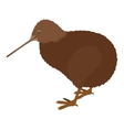 kiwi bird icon vector image