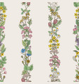 seamless pattern of tracery of hand drawn herbs vector image