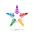 colorful star Abstract design element on white vector image