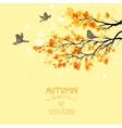 Branches with autumn leaves vector image