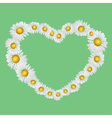 Heart with chamomiles vector image