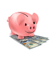 Piggy bank and fan of dollars banknotes vector image