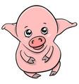 cute piglet cartoon character vector image vector image