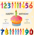 Birthday elements vector image