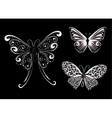 White lace butterfly Vector Image