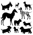 Set of of dogs silhouettes - scottish terrier vector image vector image