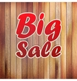 Big sale text on wooden wall vector image vector image