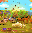 autumn field vector image