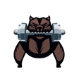 Angry dog with a dumbell vector image
