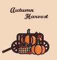 a cart filled with crop pumpkins vector image