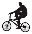 bicycle rider vector image