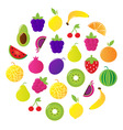 fresh fruit  berries circle vector image vector image