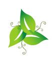 Green swirly leaves logo vector image