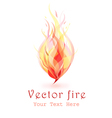flames of fire vector image