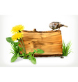 Wooden banner dandelion and green grass vector image vector image