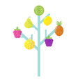 abstract stylized retro fruit vector image