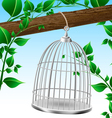 Bird cage on a tree branch vector image