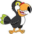 Cartoon toucan vector image