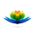 lotus multicolored logo vector image