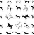 Dog breeds pattern icons in black style Big vector image