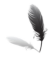 Feather and quilt vector image