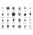 Wildlife animals footprints vector image