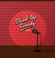 red brick spotlight stand up comedy stage vector image