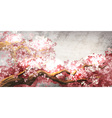 Sakura branch blooming vector image