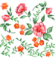 Handpainted watercolor flowers and leaves vector image vector image