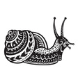 Ethnic ornamented snail vector image