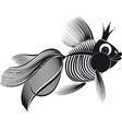 skeleton goldfish vector image