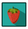 symbol strawberry icon image vector image