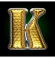 silver figure with gold k vector image vector image