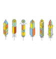 Abstract feather color icons vector image