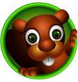 cute squirrel head cartoon vector image