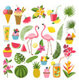 summer time labels set for tropical party vector image
