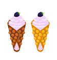 sweet belgian waffle with blackberry for breakfast vector image